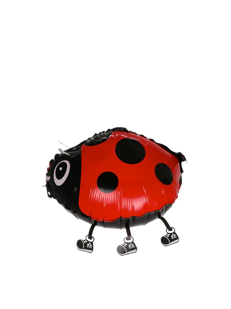 ladybug-2