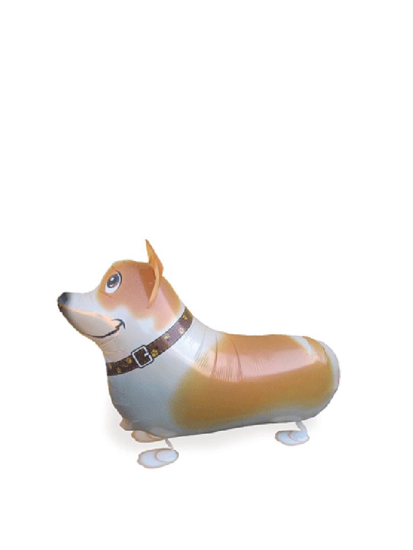 dog1-2