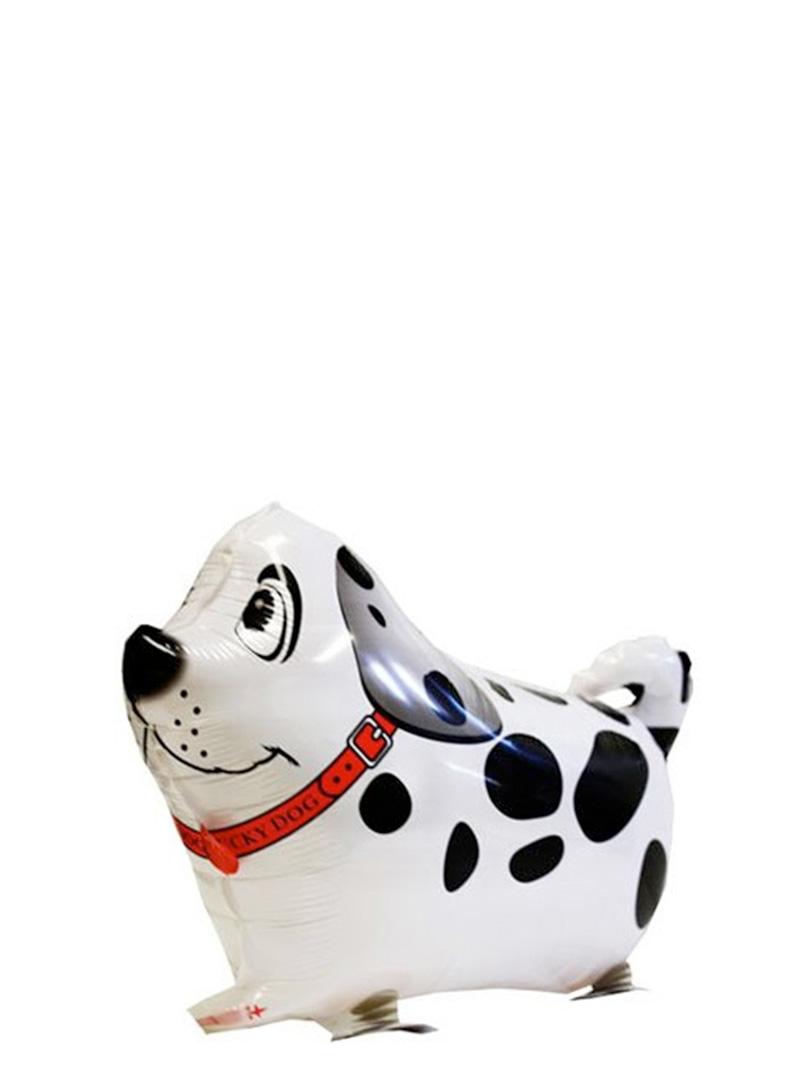 dog2-2