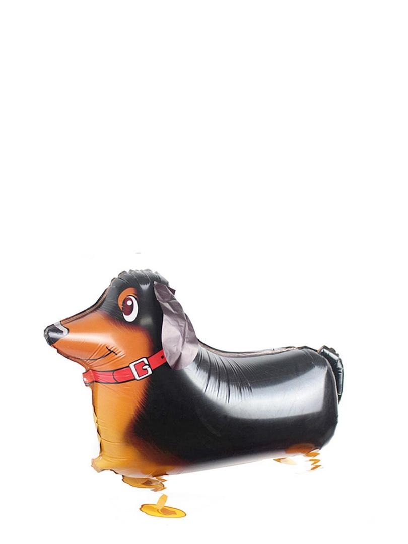 dog3-2